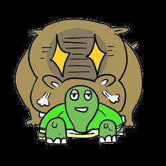 Turtle Half Eye