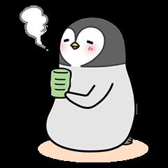 Emperor penguin Hachan 1