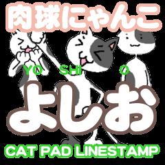 cat pad yoshio