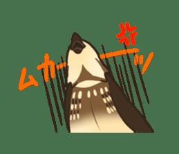 Coturnix japonica SHIJIMI sticker #628836