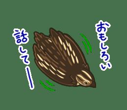 Coturnix japonica SHIJIMI sticker #628839