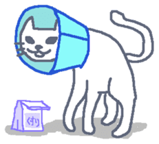 Graffiti Caty sticker #631667