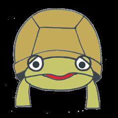 Mr.land tortoise