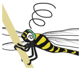 The Insect World sticker #633107