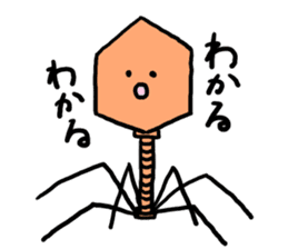 bacteriophage sticker #649483