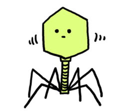 bacteriophage sticker #649491