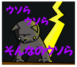 Cat for answering Everyday of the Coro sticker #656816