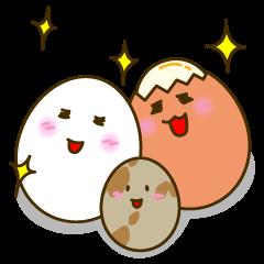 Family of egg(English)