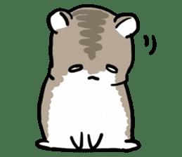 Positive hamsters sticker #664083