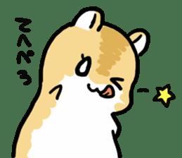 Positive hamsters sticker #664103