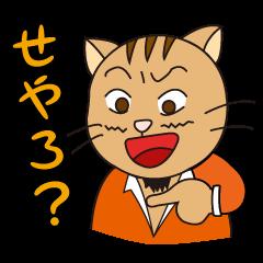 President Of Cat Contractor
