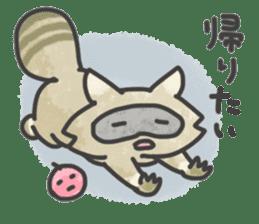 Raccoon dog TANUTAROU sticker #673453