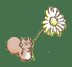 Cawaii-squirrel sticker #687151