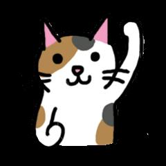 Cat's Comment