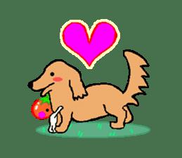 TOMATY of a tomato sticker #700299