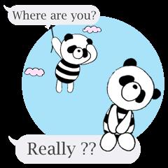 Striped panda (English version)