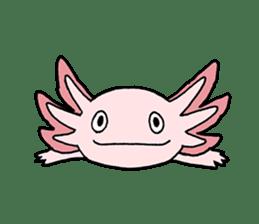 axolotl/Mexico salamandar sticker #718718