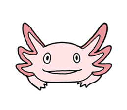 axolotl/Mexico salamandar sticker #718719