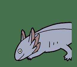 axolotl/Mexico salamandar sticker #718721