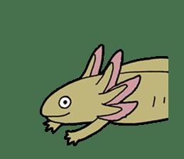 axolotl/Mexico salamandar sticker #718722