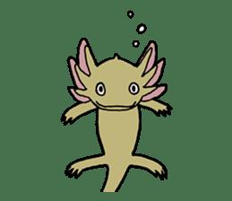 axolotl/Mexico salamandar sticker #718726