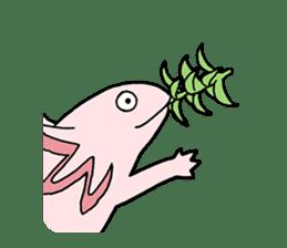 axolotl/Mexico salamandar sticker #718737