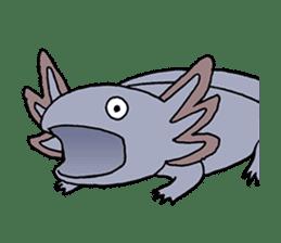 axolotl/Mexico salamandar sticker #718738