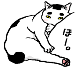 Ugly & Fat cats sticker #721774