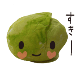 It's a cabbage! sticker #722608