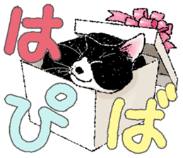 CATS for <Congratulations & Thank you> sticker #722805