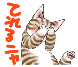 CATS for <Congratulations & Thank you> sticker #722828