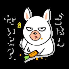 a rabbit wife