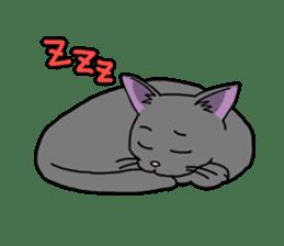 Snazzy cat Noah sticker #733027