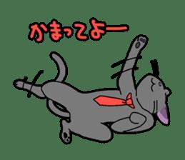 Snazzy cat Noah sticker #733061
