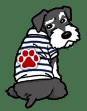 Daily life of Miniature Schnauzer sticker #733468