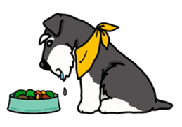 Daily life of Miniature Schnauzer sticker #733484