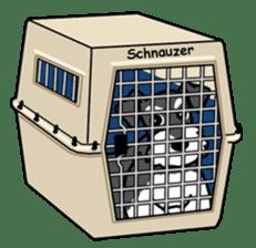 Daily life of Miniature Schnauzer sticker #733489