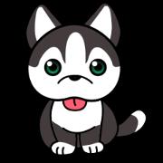 สติ๊กเกอร์ไลน์ โซระ สุนัขไซบีเรียนฮัสกี้แสนน่ารัก