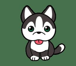 Sora, the cute siberian husky sticker #741783