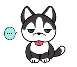 Sora, the cute siberian husky sticker #741794