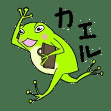 Freewheeling frog sticker #746197