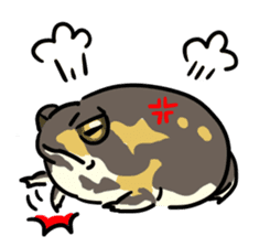 Frogs of the world sticker #748440