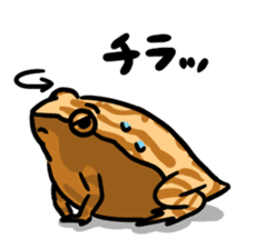 Frogs of the world sticker #748452