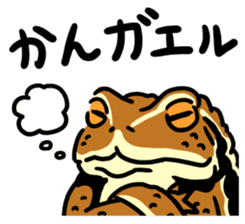 Frogs of the world sticker #748458