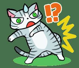 STRAY CATS sticker #760969