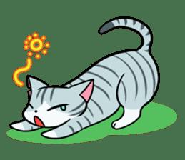 STRAY CATS sticker #760970