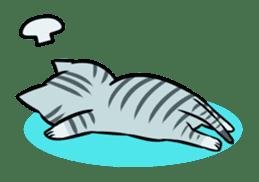STRAY CATS sticker #760971