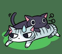 STRAY CATS sticker #760980