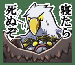 Bald eagle sticker #761304