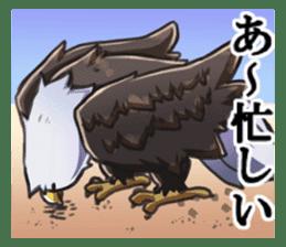 Bald eagle sticker #761311
